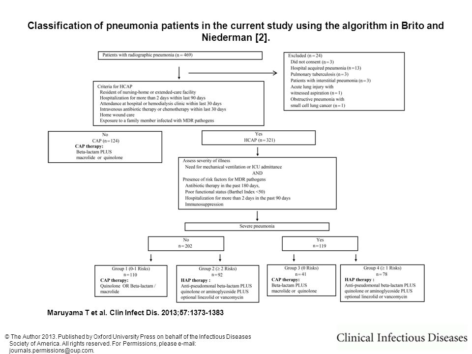 Classification of pneumonia patients in the current study using the algorithm in Brito and Niederman [2].